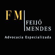 Feijó | Advogado | Direito Civil em Boa Vista (RR)