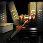 Lilian | Advogado em Tocantins (Estado)