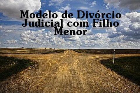 Modelo Divórcio Judicial Consensual Homologação De Acordo