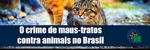 O crime de maus-tratos contra animais no Brasil