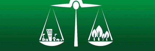A interpretação do Princípio da Insignificância no Direito Ambiental