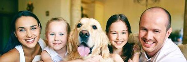 Condomínio não pode impedir morador de ter um animal de estimação