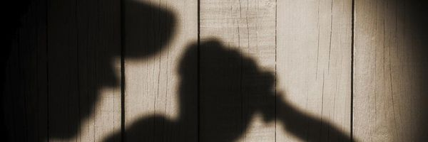 Psicopatia e seus reflexos na imputabilidade penal