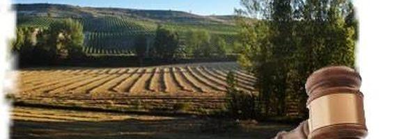 Contratos Agrários: Arrendamento e parceria e suas peculiaridades