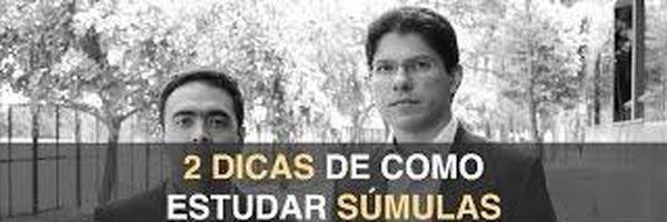 A importância do estudo das súmulas