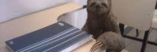 Entenda o porquê da sua preguiça em estudar