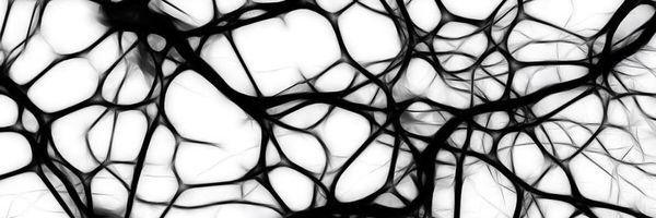 Neurociência e Direito Penal: repensando o 'livre arbítrio' e a capacidade de culpabilidade