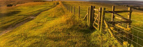 Nuances do contrato de arrendamento na compra e venda de Propriedade Rural