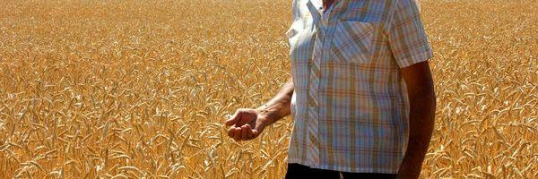 Quem tem direito à aposentar-se como trabalhador rural?