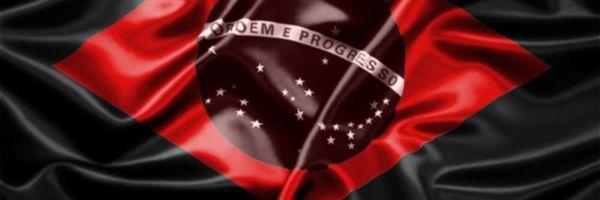 Liberdade e Propriedade X Estado Brasileiro.