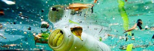 Apoie iniciativa para proibir a distribuição de canudos, sacolas e microplásticos em cosméticos
