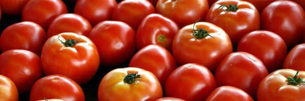 TJ-SP reconhece insignificância em furto de caixa de tomates de R$ 80