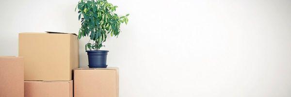 Como substituir a caução para conseguir a liminar de despejo?