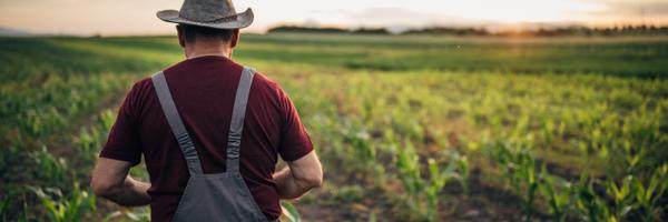 Pequeno produtor recorre à Justiça Federal e garante aposentadoria rural por idade
