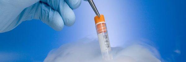 Implantação de embriões congelados em viúva exige autorização expressa do falecido
