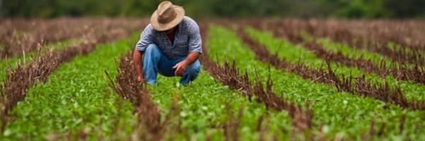 Prova testemunhal é indispensável para comprovar atividade rural, define TRF-4