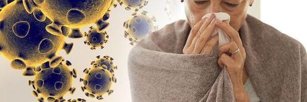 O coronavírus e o crime de infração de medida sanitária preventiva