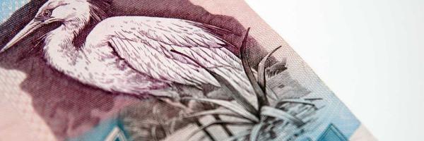 Mulher cobra R$ 5 de vizinho e é obrigada a pagar R$ 3 mil de indenização