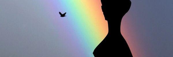 A criminalização da homofobia pelo STF