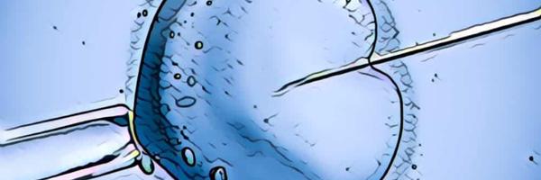 Plano de saúde deverá custear fertilização in vitro para tratamento de criança da família