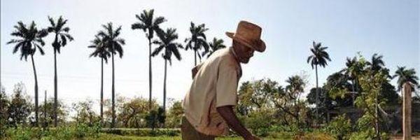 Aposentadoria Por Idade Urbana Com Contagem De Tempo Rural