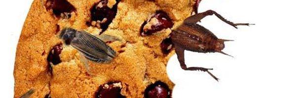 Corpo estranho presente nos alimentos: Afinal, há ou não necessidade de ingestão para a configuração de dano moral?