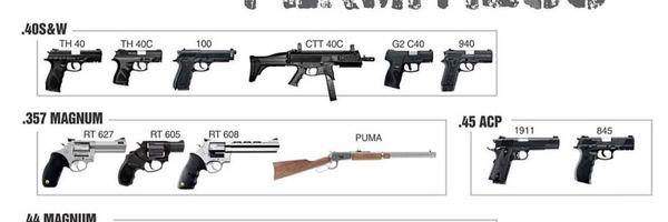 As recentes mudanças no Estatuto do Desarmamento e as suas consequências para os que já respondem pelos crimes nele previstos
