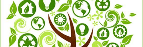 Qual a importância do descarte correto dos plásticos para o meio ambiente?
