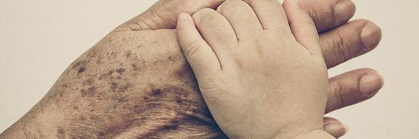 Adoção de neto pelos avós