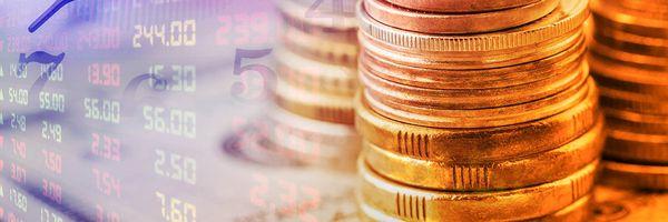 Tesouro Selic: advogada analisa alteração no spread e mudança nas datas de investimento