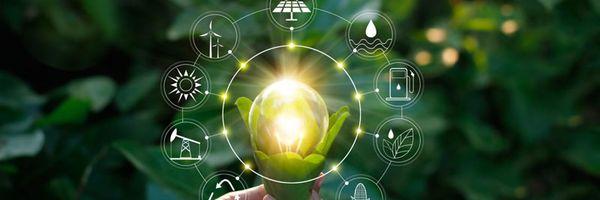 Startups, sustentabilidade e o novo empreendedorismo, por Frederico Cortez