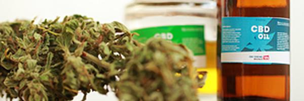 Plano de saúde deve fornecer medicamento à base de cannabis