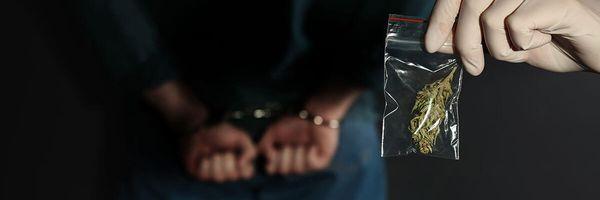 Acordo de não Persecução Penal no Tráfico privilegiado