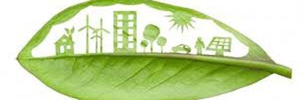 Não se admite a aplicação da Teoria do fato consumado em tema de Direito Ambiental