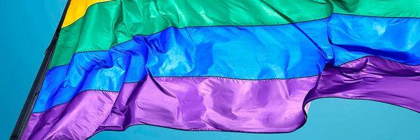 O perigo da criminalização por jurisprudência: o caso da homofobia