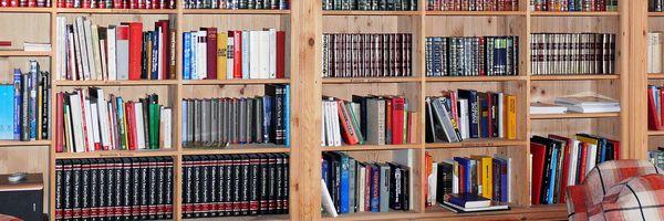 O que a literatura pode fazer por sua advocacia