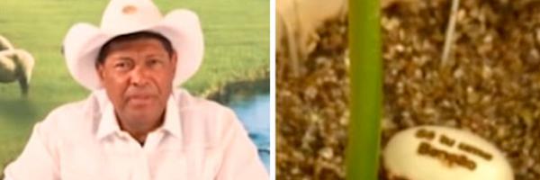 MPF pede retirada do ar de vídeos em que pastor anuncia cura 'mágica' da Covid-19