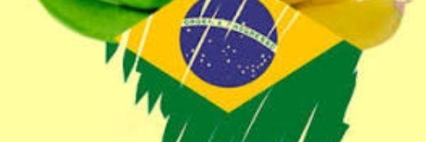 Polarizações e (des)informação revela a Republiqueta de bananas que o Brasil se encaminha