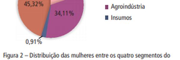 O perfil da mulher em números e dados: