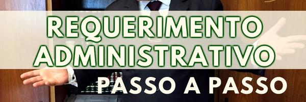 Requerimento Administrativo - Passo a Passo - Lei nº 9.784/1999