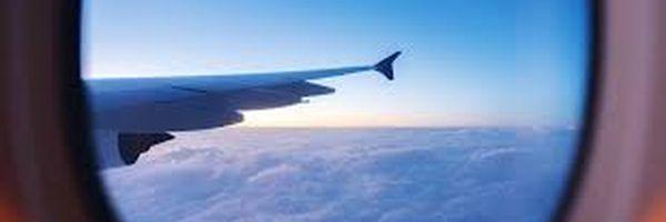 Picada de Escorpião dentro do avião e a responsabilidade civil indenizatória