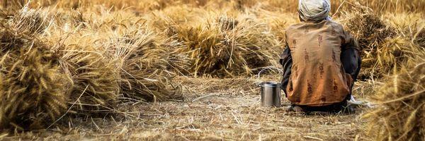 A utilização do tempo rural na aposentadoria do INSS