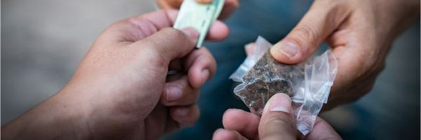 Condutas equiparadas ao crime de tráfico de drogas