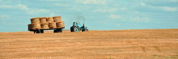 Produtor Rural: como o livro caixa pode te levar à malha fina