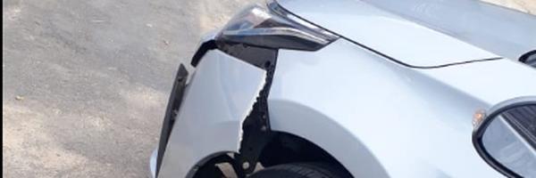 Concessionária de Rodovia é Condenada a Indenizar Usuários por Acidente de Trânsito Causado por Animais Soltos na Via