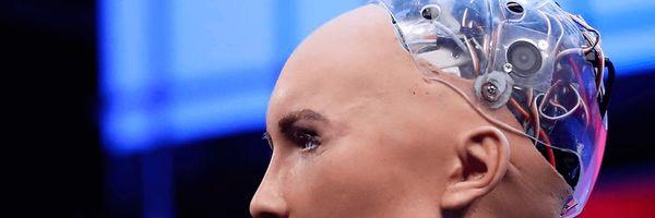 Robôs podem ser vítimas de estupro?