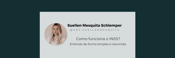 Como funciona o INSS?