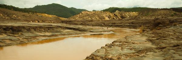 Qual a responsabilidade do Direito Ambiental?