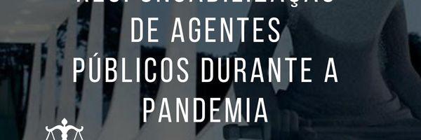MP Nº 966/2020: Responsabilização dos agentes públicos durante a pandemia