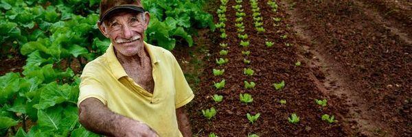 Período rural para fins de aposentadoria,é possível ?
